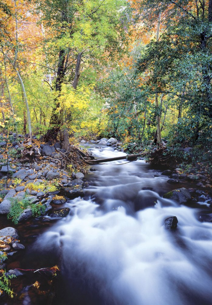 Oak Creek - SD0409 | Tom Johnson | Photography-Exposures International Gallery of Fine Art - Sedona AZ