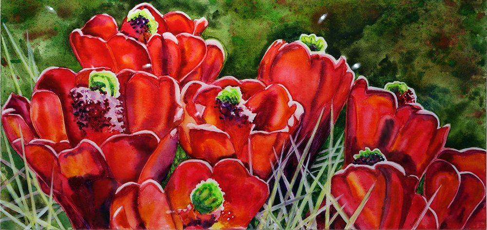 Dianne Adams Clearcup Cactus Slider Image